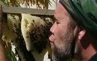 michael-jordan-bee-whisperer