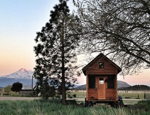 E196: Survival Punk on Ways to Double your Dollar in a Tiny House