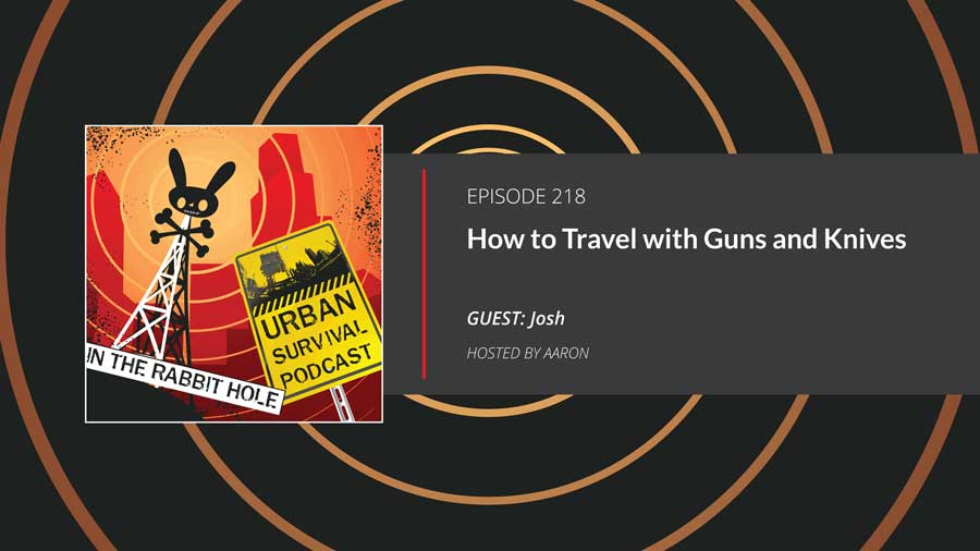 Traveling with Guns