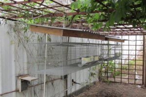 Wire Mesh Rabbit Hutch