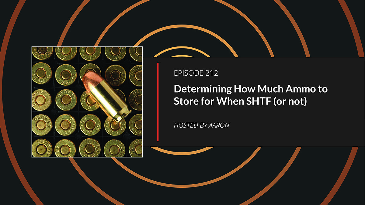 Determining How Much Ammo to Store