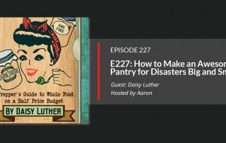 Daisy Luther - The Pantry Primer